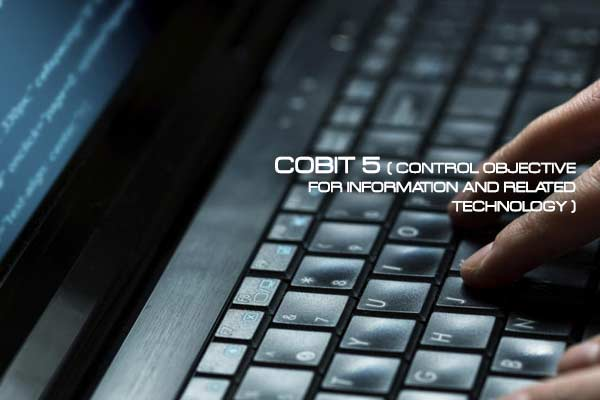 COBIT 5 ( Control Objective for Information and Related Technology )